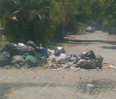 Entre 24 y 25 incrementó acumulación de basura en un 15 % más