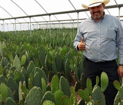 La reducción de recursos fiscales al campo «empujará al abismo de la dependencia alimentaria», dice líder campesino