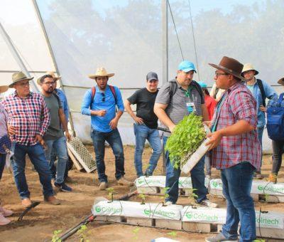 Imparten taller sobre técnicas agroecológicas a personal del CecytCol