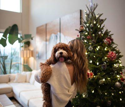 Decora tu casa para Navidad con poco presupuesto