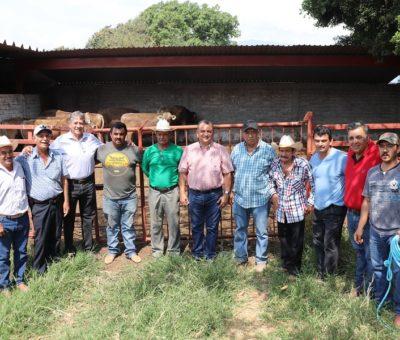 Felipe Cruz Entrega 7 Sementales a Productores del Campo, del Programa Prodeter