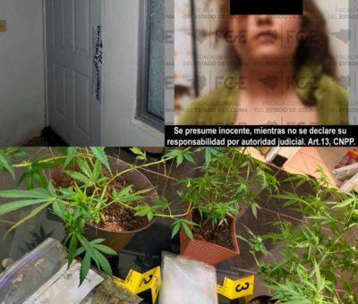 En cateo asegura FGE inmueble, droga y detiene a una mujer